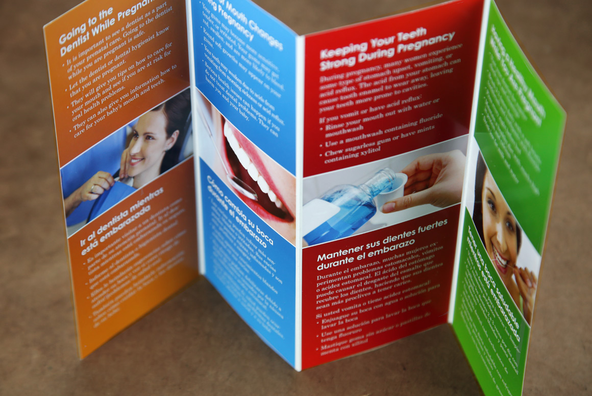 Teeth First Information Pamphlet